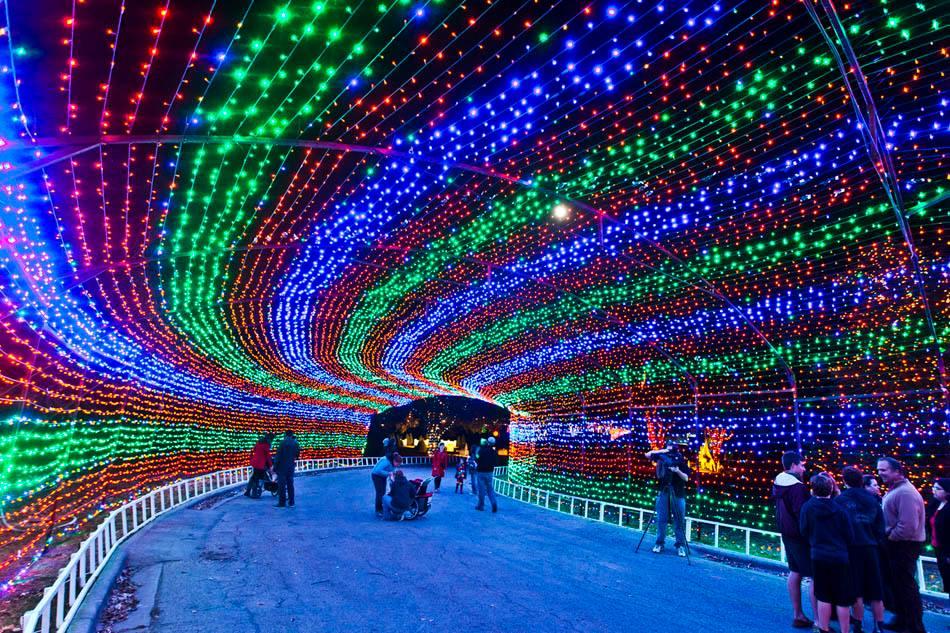 christmas lights college station - Christmas Lights College Station