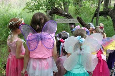 fairie6