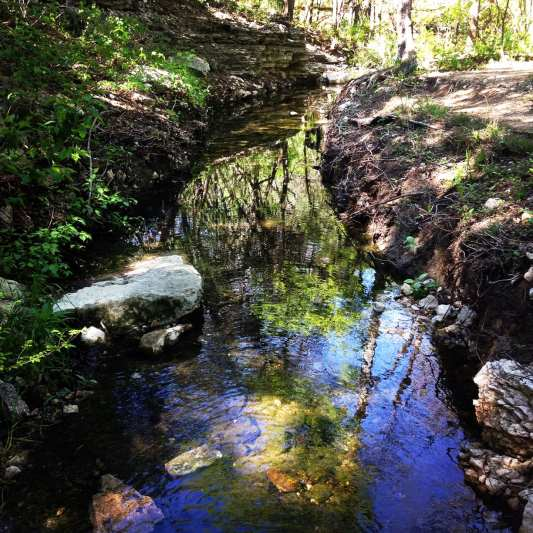 Barrow Creek runs through the Preserve and can be a nice place to cool off on a hot day.