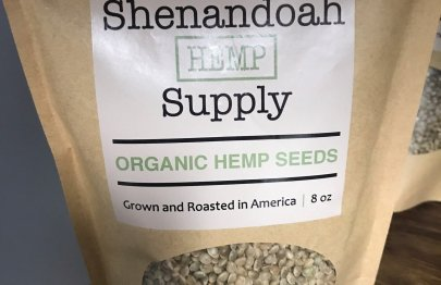 Organic Hemp Seeds Photo