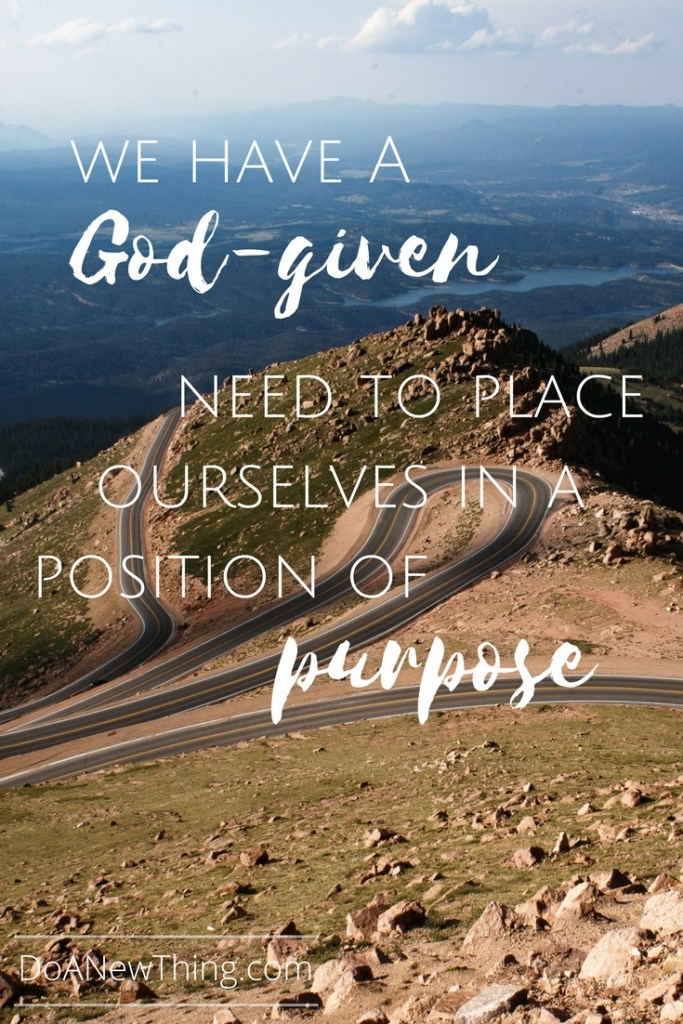 Whether we are trying to define our passion, articulateour calling, or zone in on our ministry or business niche,having a clear picture of our purpose is one of the keys to being effective.