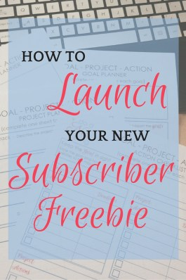 Treat your subscriber freebie like the valuable piece of work it is, and give it a proper launch!