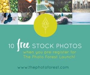 10-free-stock-photo-image-1