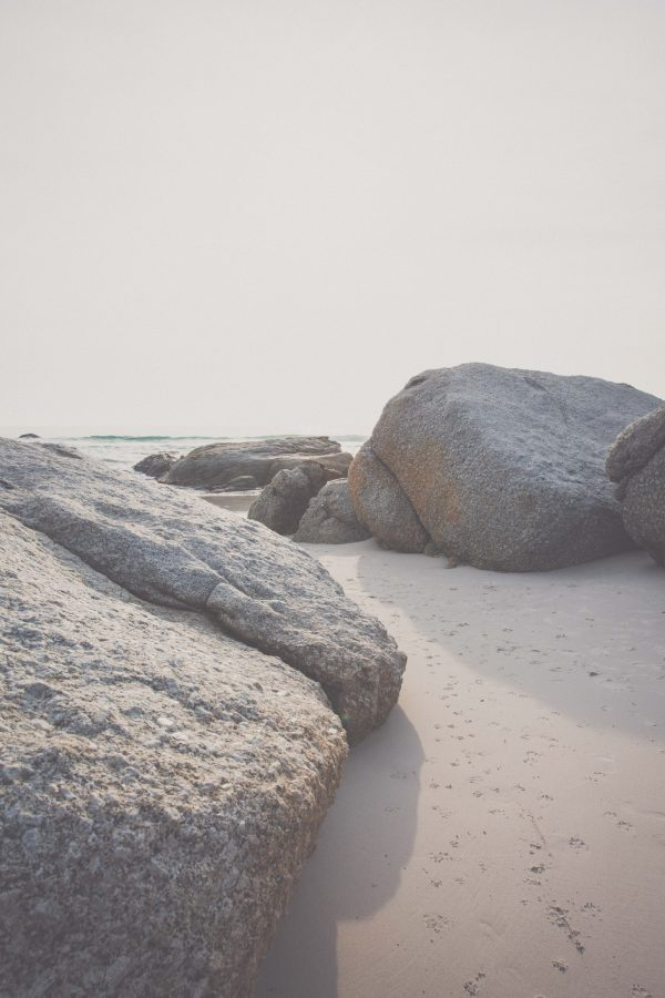 Rocky Beach - The Photo Forest