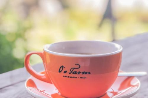 Coffee Shop Dreamin'...And a Visit to O'o Farm