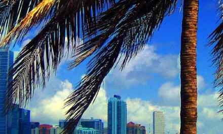 Miami z Vídně za 8556 Kč