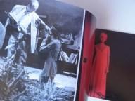 4 mosche di velluto grigio (interior libro)