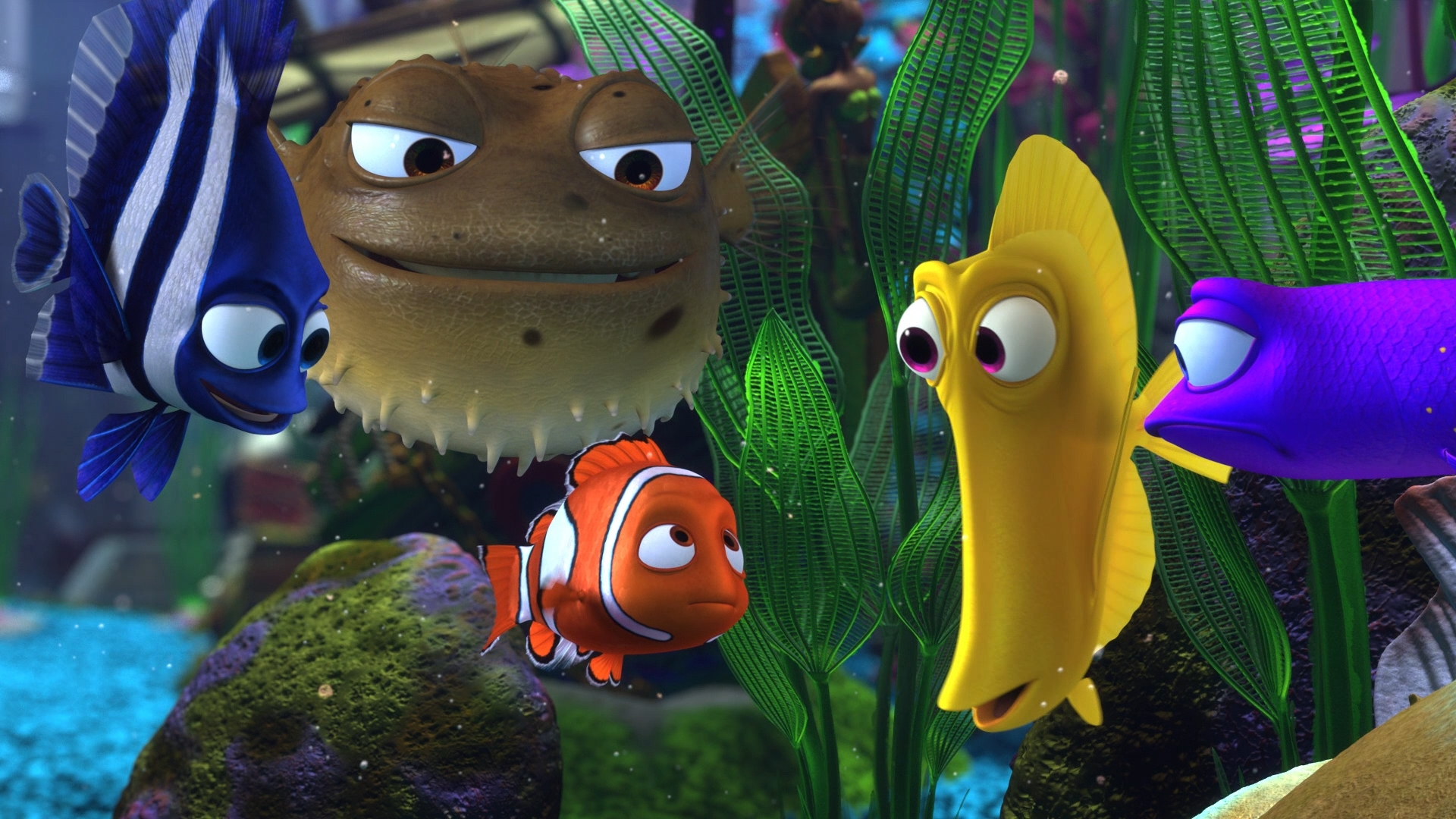 Finding nemo 3d review for Finding nemo fish