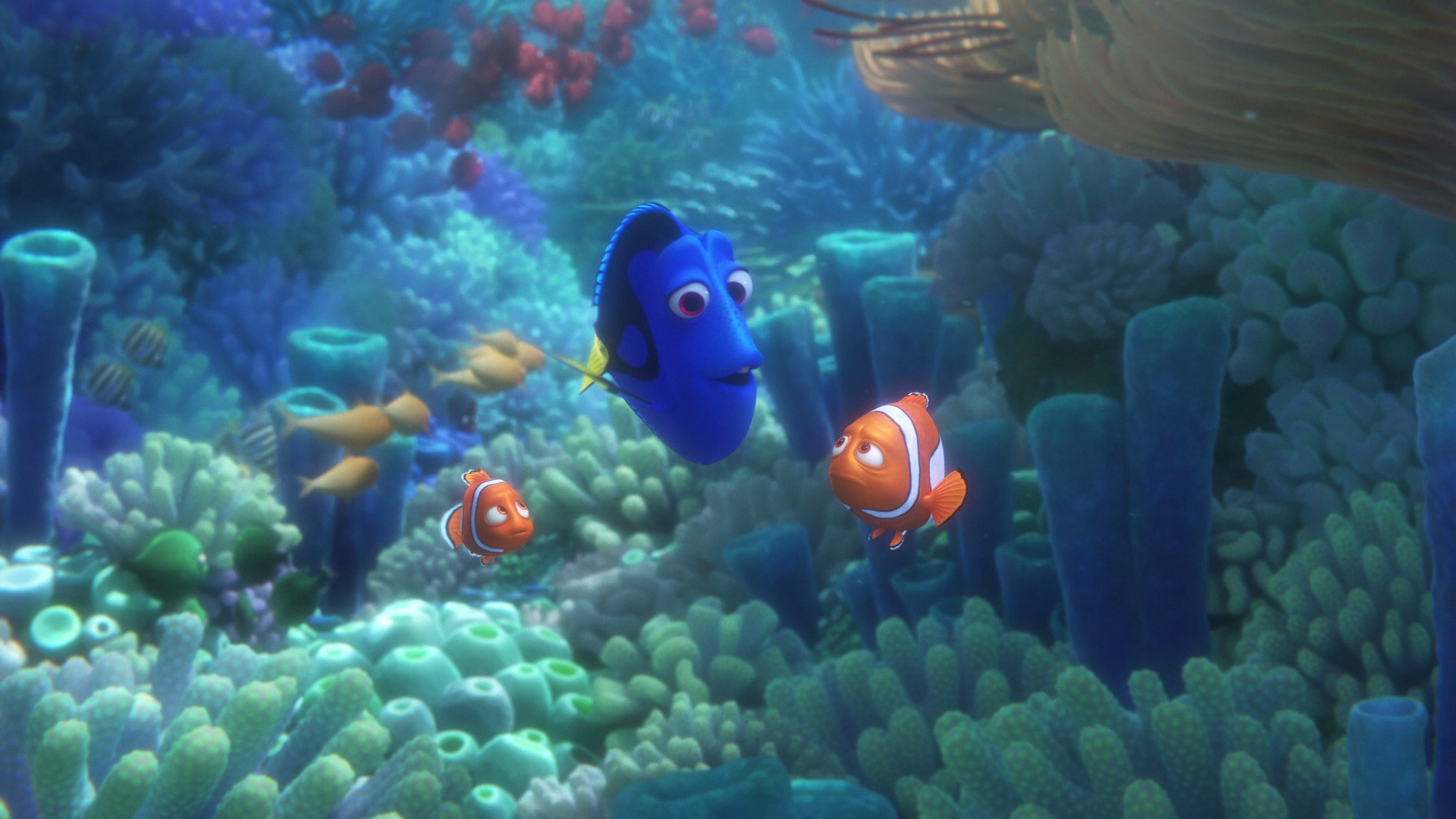 Finding Dory 3D Blu Ray Review