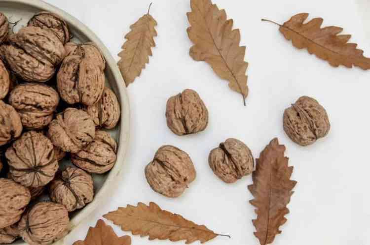 грецкий орех польза вред
