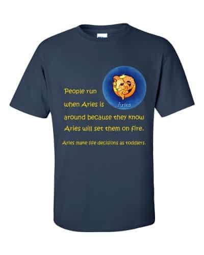 Aries T-Shirt (navy)