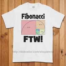 Fibonacci FTW T-Shirt (Unisex)