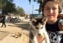 Przeszedł prawie 500 km, aby uciec z Syrii. Nie potrafił opuścić swojego psa