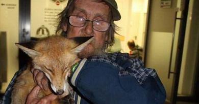 Wzruszająca historia bezdomnego, który uratował lisa