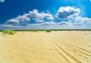 Polska Sahara – największa pustynia w Europie jest w Polsce
