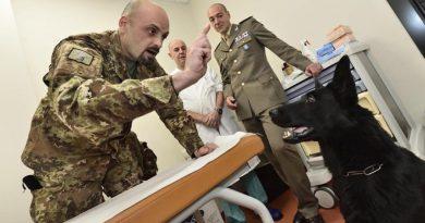 Suka Liu służąca we włoskim wojsku niezawodnie wykrywa raka