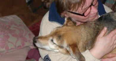 Pani Krystyna opiekuje się 43 psami których nikt nie chciał