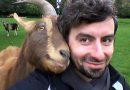 Kozy wolą uśmiechniętych ludzi. Zdenerwowanych ignorują
