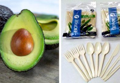 Bioplastik z pestek awokado. Rozkłada się w ciągu 240 dni