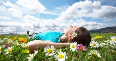 Już 20-minutowy kontakt z naturą obniża poziom hormonów stresu w organizmie