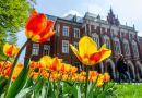 Uniwersytet Jagielloński ma 655 lat