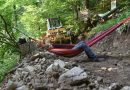 Na hamakach bronią bieszczadzkie lasy przed wycinką