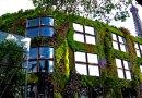 Biologiczny beton pochłania dwutlenek węgla, izoluje i wygląda jak pionowy ogród