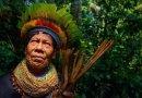 Plemię w Amazonii tworzy 500-stronicową Encyklopedię Medycyny Ludowej dla przyszłych pokoleń