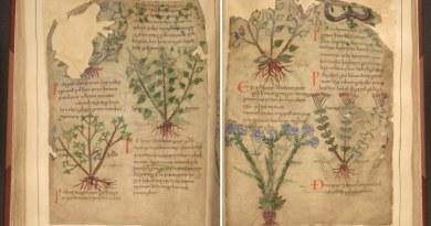 1000-letni manuskrypt