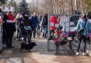 Krakowianie wyprowadzili na spacer psy ze schroniska