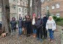 """Mieszkańcy Szczecina uratowali drzewa przed wycinką. """"Nie chcemy betonowej pustyni"""""""