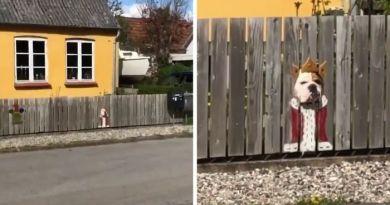 Rodzina pomalowała płot w miejscu, w którym ich pies często wystawia głowę. Hit internetu