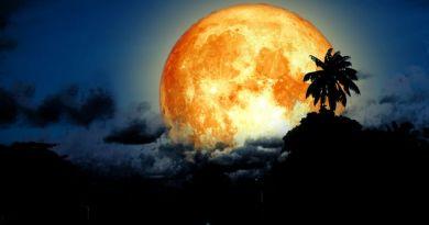 Już jutro Księżyc Jesiotrów – sierpniowa pełnia, czas emocjonalnych żniw, uwalniania i buntowania się przeciwko zasadom