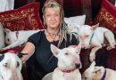 Kazał żonie wybierać między jej adoptowanymi psami a nim. Sprawdźcie co wybrała