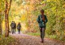 Spacery podczas kwarantanny są kluczowe dla zachowania zdrowia psychicznego