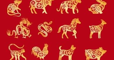Horoskop chiński 2021 na  Rok Bawoła. Zobacz prognozy dla swojego znaku.