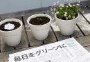 """Japońska gazeta dosłownie rozsiewa """"dobre wiadomości"""""""