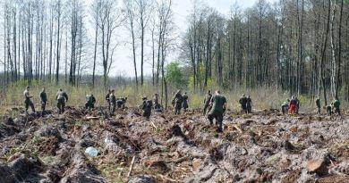 Żołnierze wzięli udział w akcji sadzenia lasu