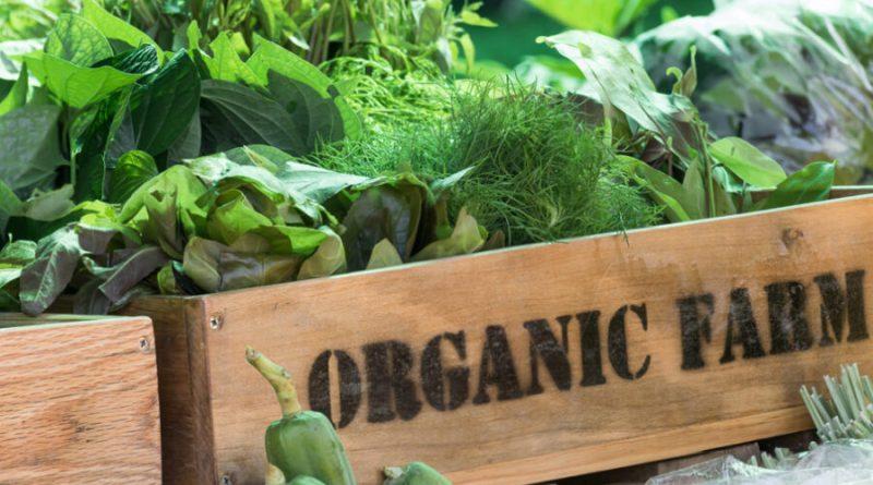 Organiczne farmy