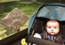 Płaszczka i dziecko robią tę samą minę równocześnie. Zabawne zdjęcie z rodzinnej wycieczki