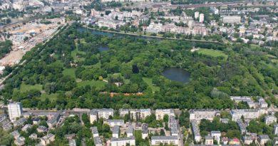 Warszawa wprowadzi Kartę Praw Drzew