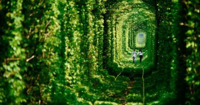 Ukraiński Tunel Miłości