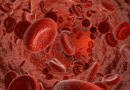 Komórki macierzyste pomagają wrócić do zdrowia po udarze mózgu