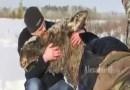 Ludzie na ratunek zwierzętom