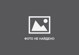 История №18: «Уродливый кот»