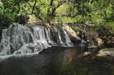 120116_Khao Yai National Park_Tajlandia (42)