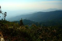 Doi Pui National Park (23)