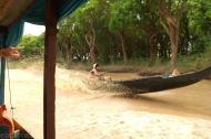 Las mangrowy (1)