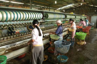 W fabryce jedwabiu Da Lat (3)