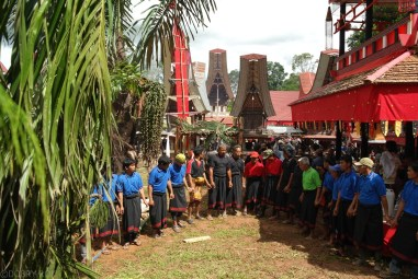 Tana Toraja Ceremonia pogrzebowa_Indonezja (20)